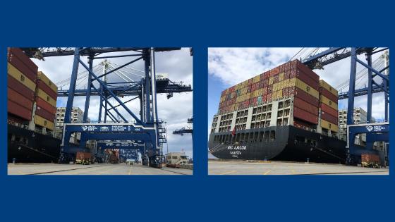 Charleston Port Complex